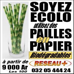 Des pailles en papier